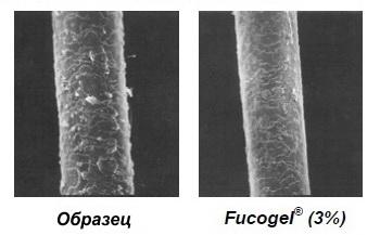 Фукогель восстановление волос